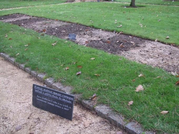 L'un des carrés Yves Rocher - Jardin Botanique