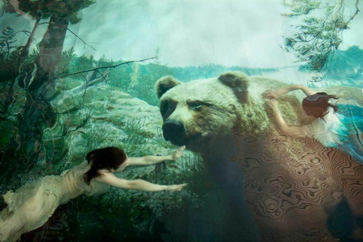 Susanna-Majuri-bear