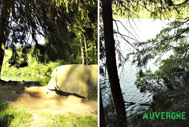 Petite plage sauvage à l'ombre des arbres...