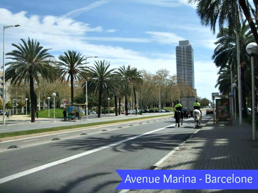 avenue marina barcelone