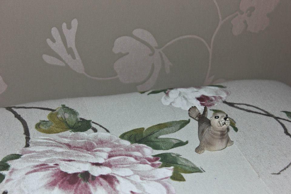 Voici Bibi, la mascotte de ce séjour en Baie de Somme, vu que je n'ai pas pu voir de vrais phoques :(