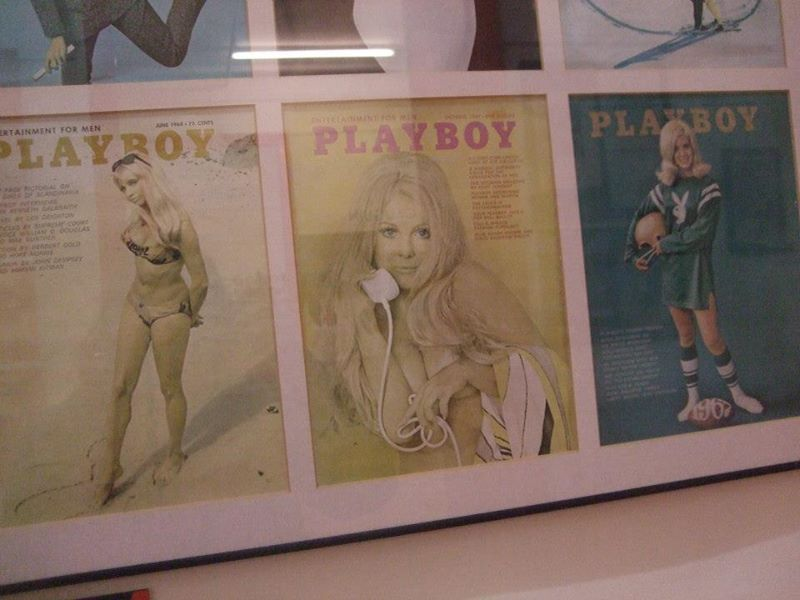 covers playboy