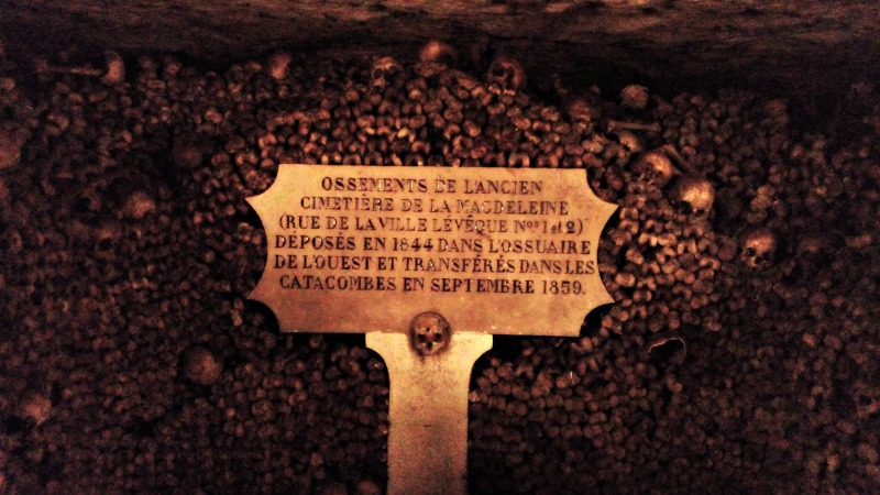 ossements catacombes de paris
