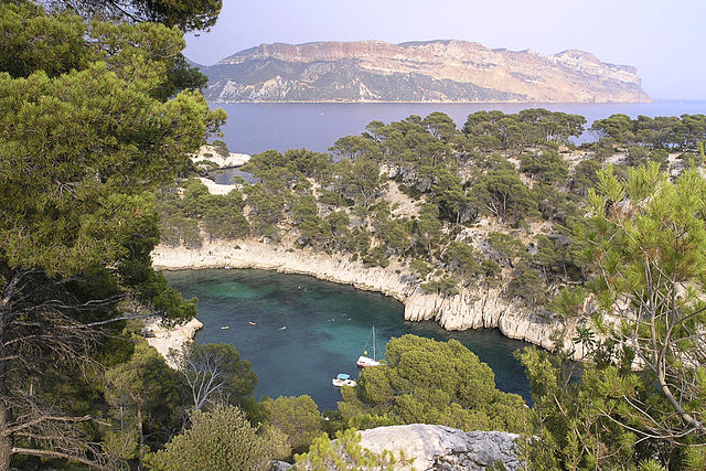 «Calanque Port Pin». Sous licence CC BY-SA 3.0 via Wikimedia Commons.