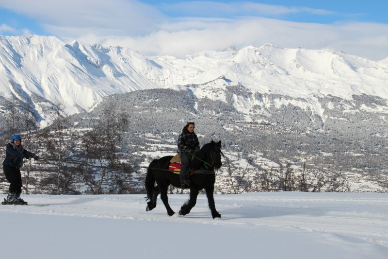 ski joering équitation nax