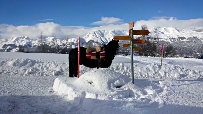 ski joering suisse