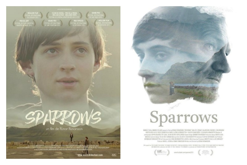 avis sparrows film cinéma