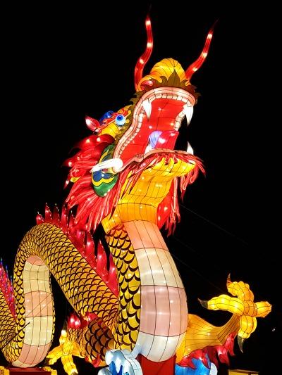 china-light-anvers
