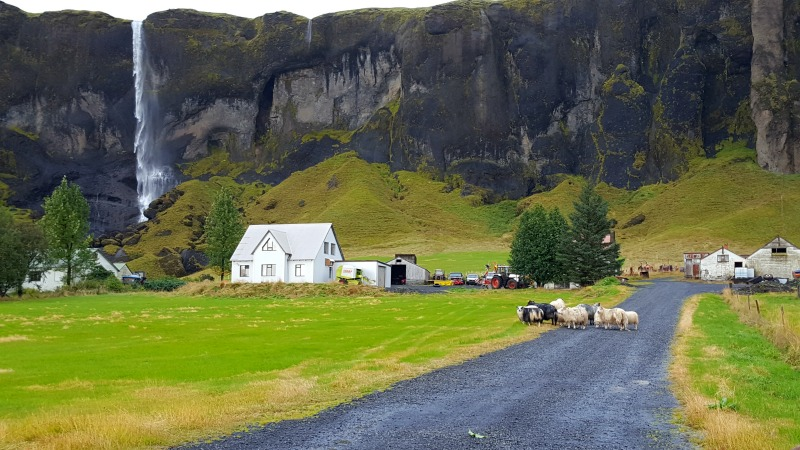 blog road trip en islande