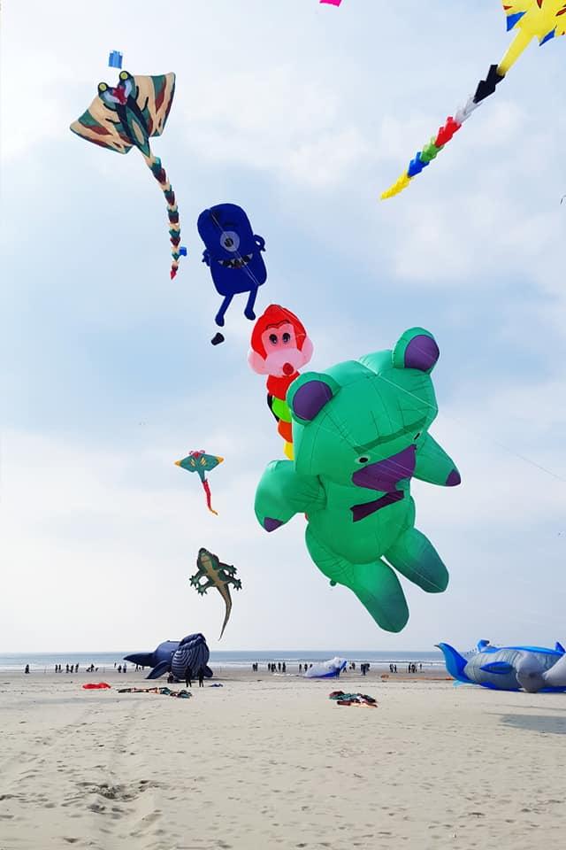 festival des cerf volants berck