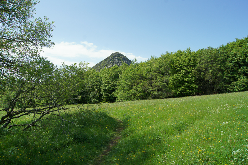 randonnée mont gerbier de jonc