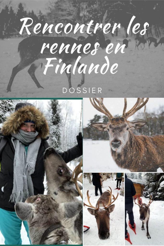 élevage de rennes finlande
